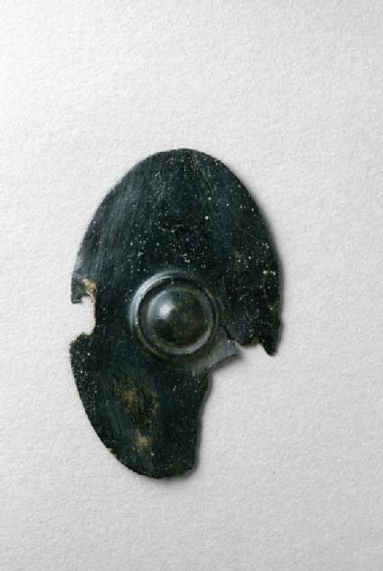 Miniature shield