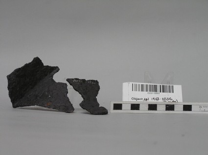 Iron binding fragment