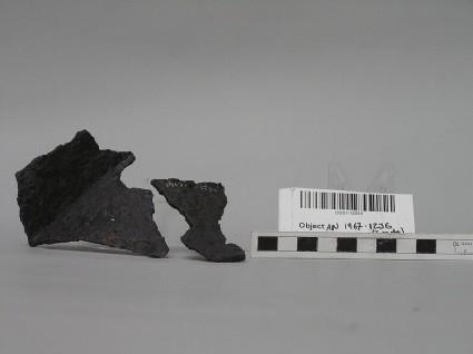 Iron binding fragment