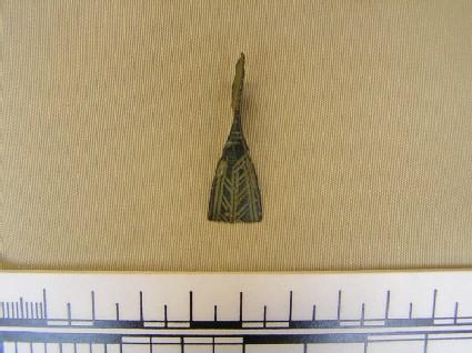 Fibula fragment