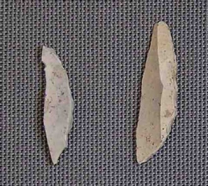 2 microliths
