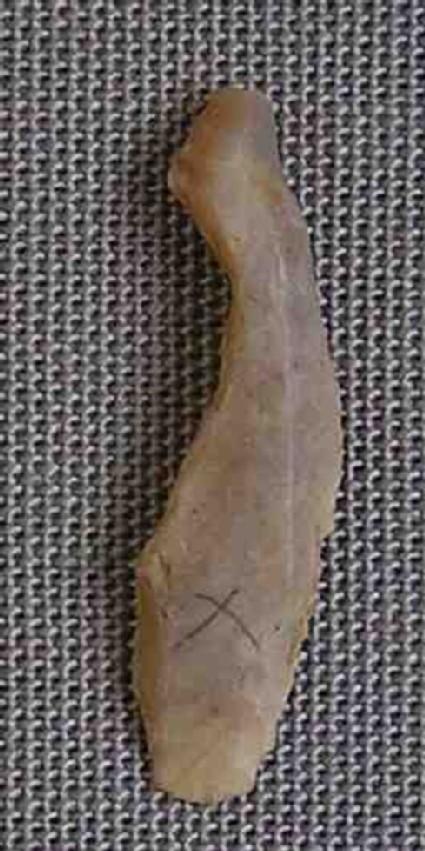 Notched bladelet