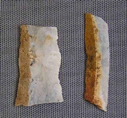 2 bladelet fragments