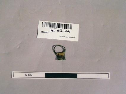 Circular fragment