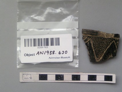 Burnished rim sherd with incised decoration and white pigment