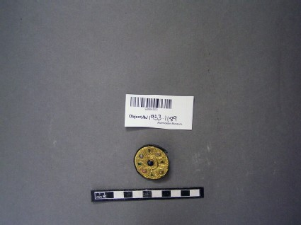 Disc brooch