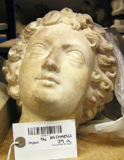Statue head possibly of Herakles