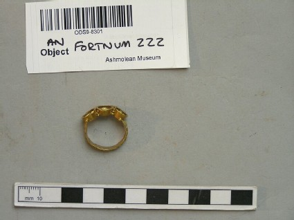 Ring, ornamental finger-ring