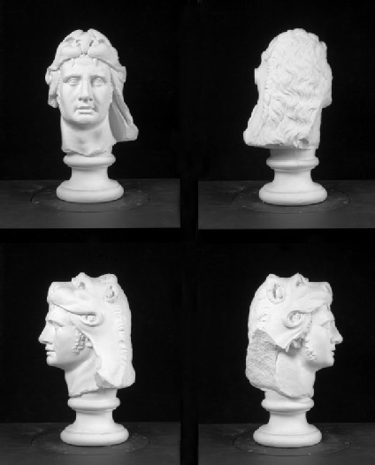 Cast of the head of Mithridates VI of Pontos