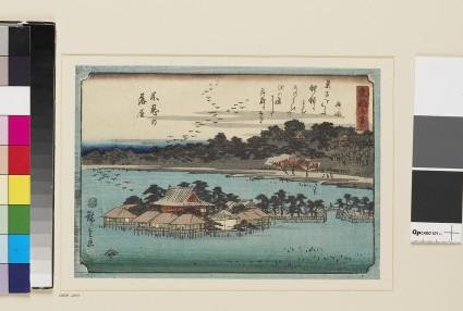Descending Geese at Shinobazu Pond