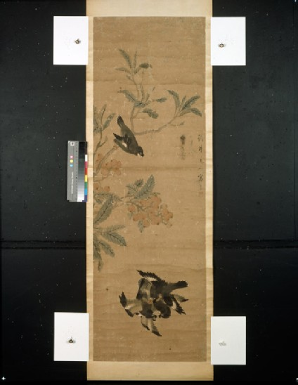 Birds and branch