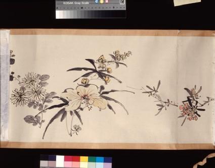 Flowering plants of the four seasons