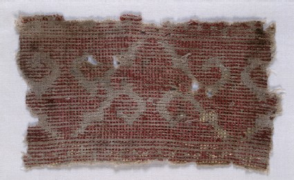 Textile fragment with tendrils