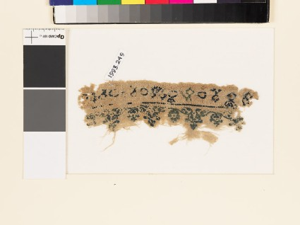 Textile fragment with floral scrolling border, birds, and circles