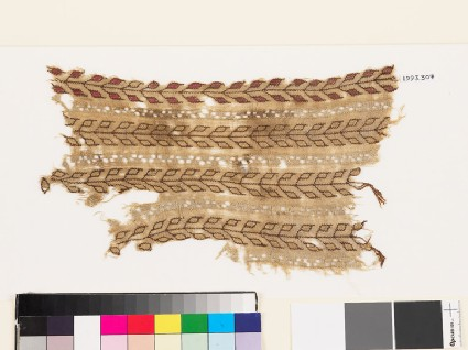 Textile fragment with stems and pairs of leaves