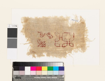 Sampler fragment with stylized floral shapes, S-shapes, and interlocking circles