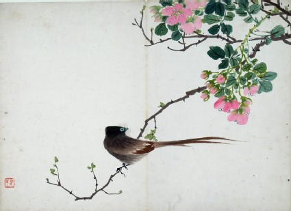 Bird sitting on a branch with pink flowers