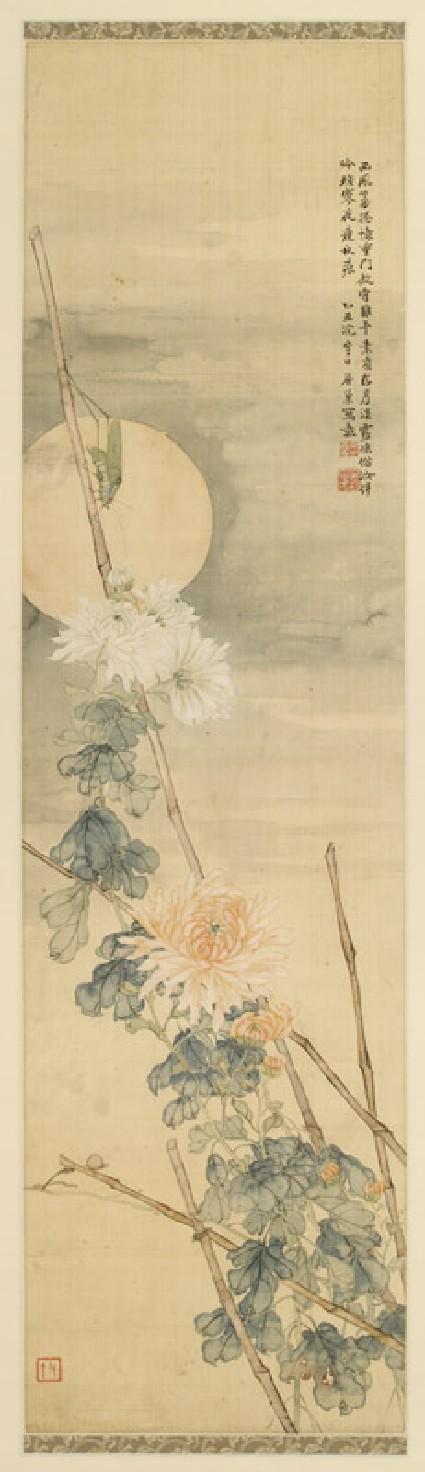 Grasshopper and chrysanthemum