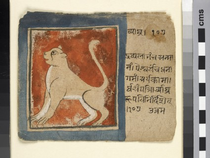 Vyāghra, or lion