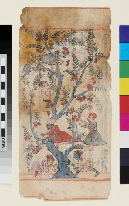 Page from a Sangrahani Sutra page, illustrating the tree of the Leśyas