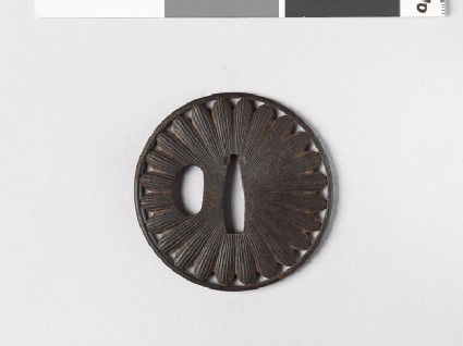 Lenticular tsuba with chrysanthemum florets