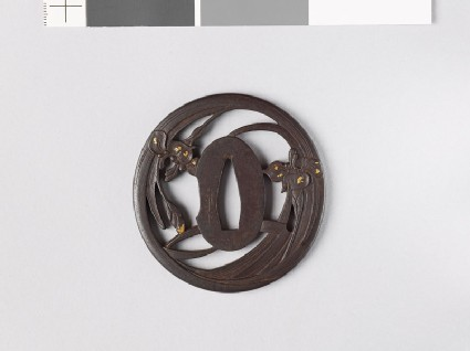 Tsuba with iris plants