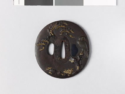 Lenticular tsuba with a hawk on a pine tree