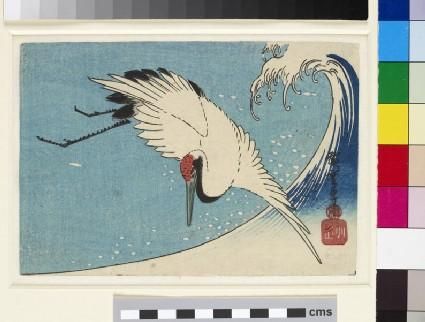 Crane in flight over a breaking wave