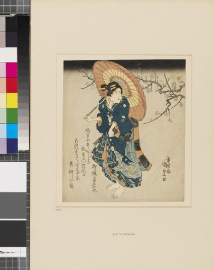 A woman with an umbrella under a flowering plum branch