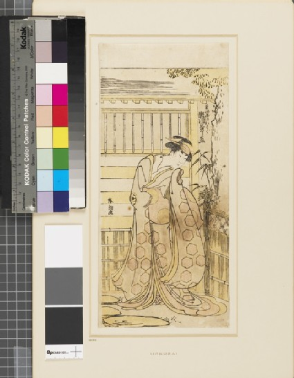 Segawa Kikinojō outside a house playing the part of a Hoso-ya courtesan