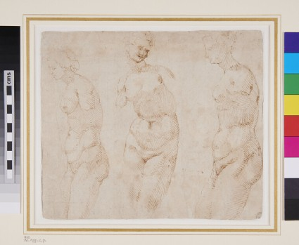 Recto: Three Studies from an antique Statue of Venus