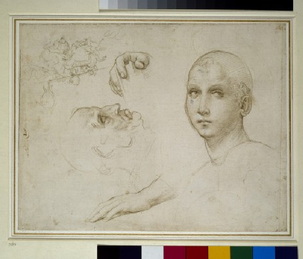 Studies for the Trinity of San Severo and a sketch after Leonardo