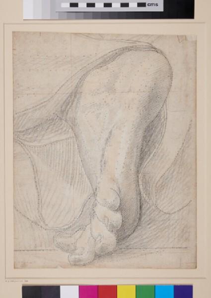 A Foot