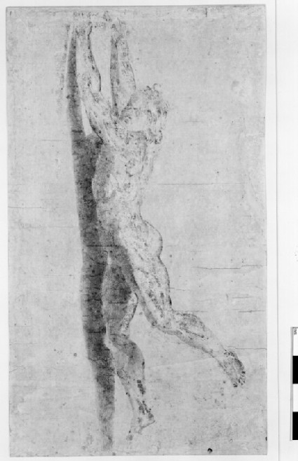 Nude Man clinging to a Wall