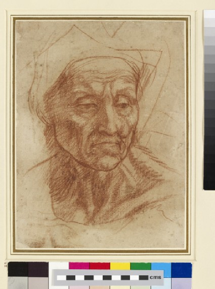 Study of an old Woman's Head