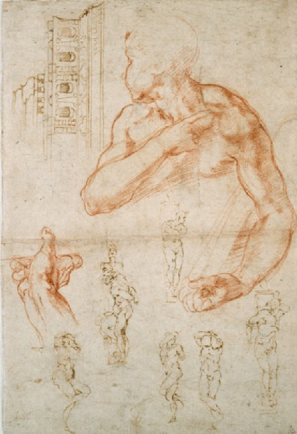 Recto: Various Studies for the Sistine Ceiling and for the Tomb of Pope Julius II<br />Verso: Studies of a Man's leg