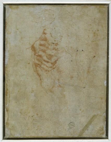 Recto: Studies of Anatomy Verso: Male Torso