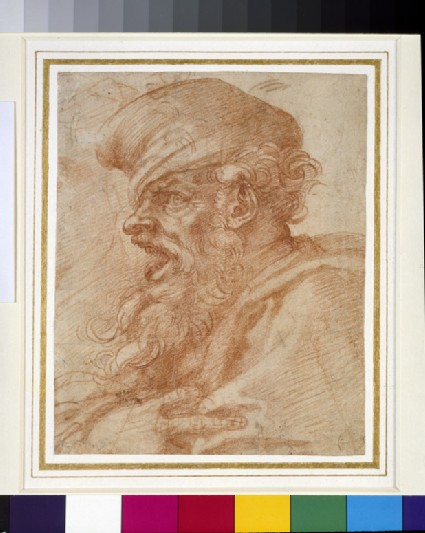 Recto: Head of a Bearded Man shouting  <br />Verso: Various Studies