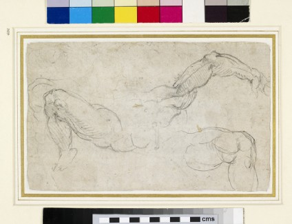 Recto: Studies of Arms and Legs