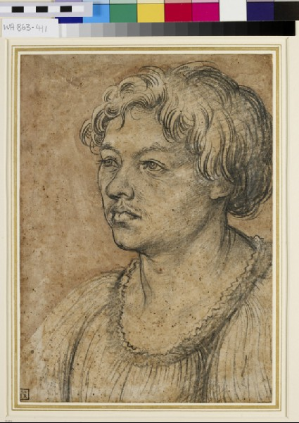 Portrait of a young Man (possibly Martin Schongauer)