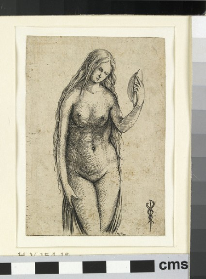 Venus, or Vanity