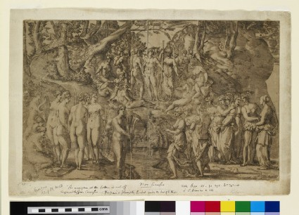 The Muses and the Perides