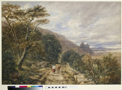 Country Track leading to Harlech Castle