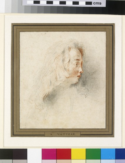 Head of a boy in profile to right