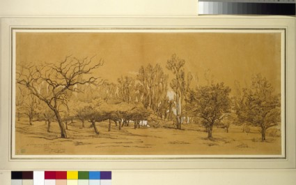 View of an orchard at Saint-Denis