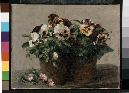 Still Life of Pansies and Double Marguerites