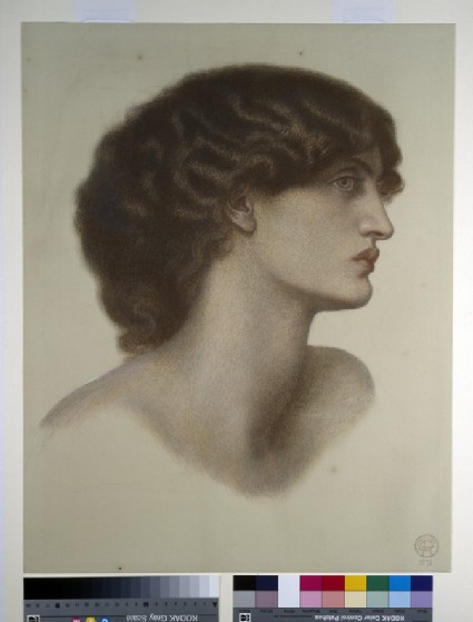 Perlascura (Jane Morris)