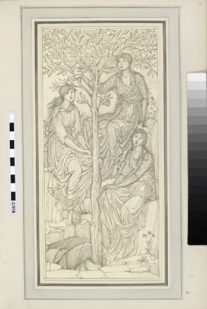 Study of three female figures by a tree, possibly Garden of Hesperides