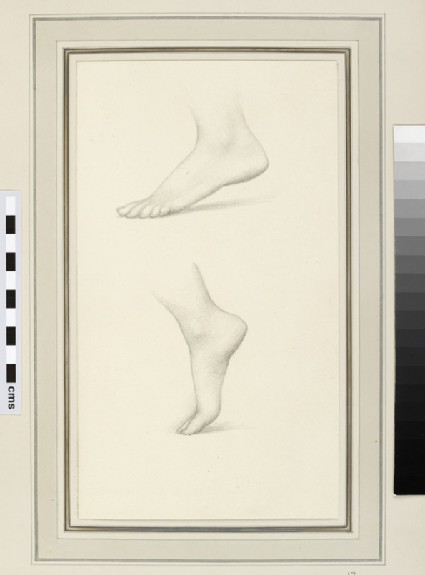 Two studies of a foot