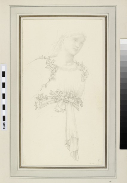 Light sketch of a figure with ivy encircling her waist and shoulders